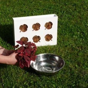 Rostliny zbavte substrátu, ve kterém rostly až na čisté kořínky