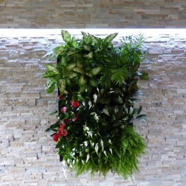 Obraz z živých rostlin, Velká Bíteš