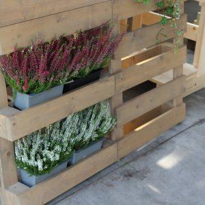Jak Si Osázet Paletu S Květináči Crazy Pot? | Zahrada Na Stěnu ...