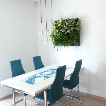 Obraz z živých rostlin, Nové Strašecí