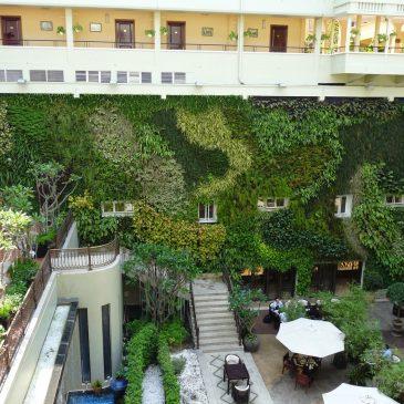 Navštívili jsme – Největší vertikální zahrada ve Vietnamu